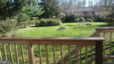 Back yard from deck - 17576 COACHMAN DR, HAMILTON