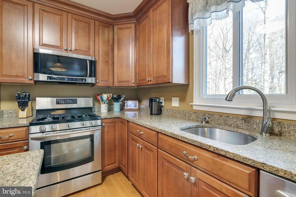 Kitchen Granite Countertops - 14859 BUTTONWOOD CT, WOODBRIDGE