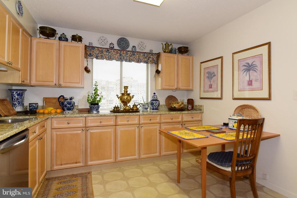 Cabinets wrap around this spacious kitchen! - 19385 CYPRESS RIDGE TER #817, LEESBURG