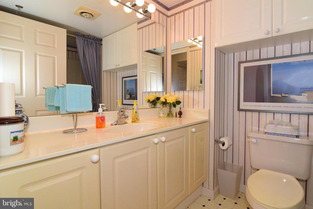 Full hall bath - 19385 CYPRESS RIDGE TER #817, LEESBURG
