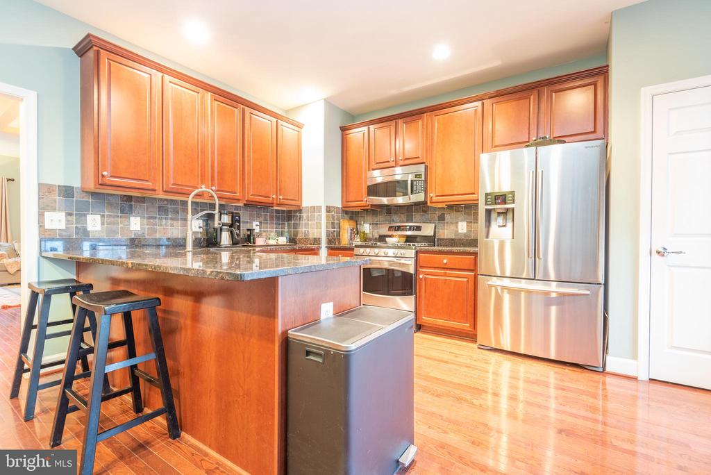 Well-equipped gourmet kitchen - 194 STAR VIOLET TER SE, LEESBURG