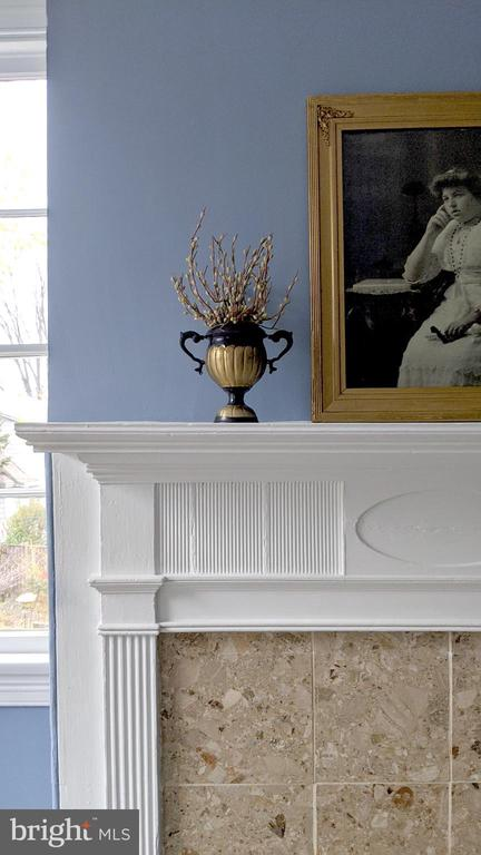 detail of fireplace - 4343 39TH ST NW, WASHINGTON