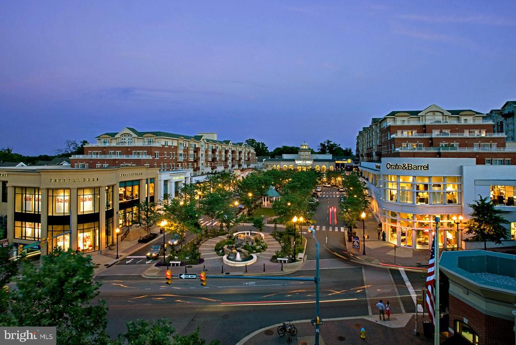 Walk to shopping and restaurants of Clarendon! - 1301 N COURTHOUSE RD #1711, ARLINGTON
