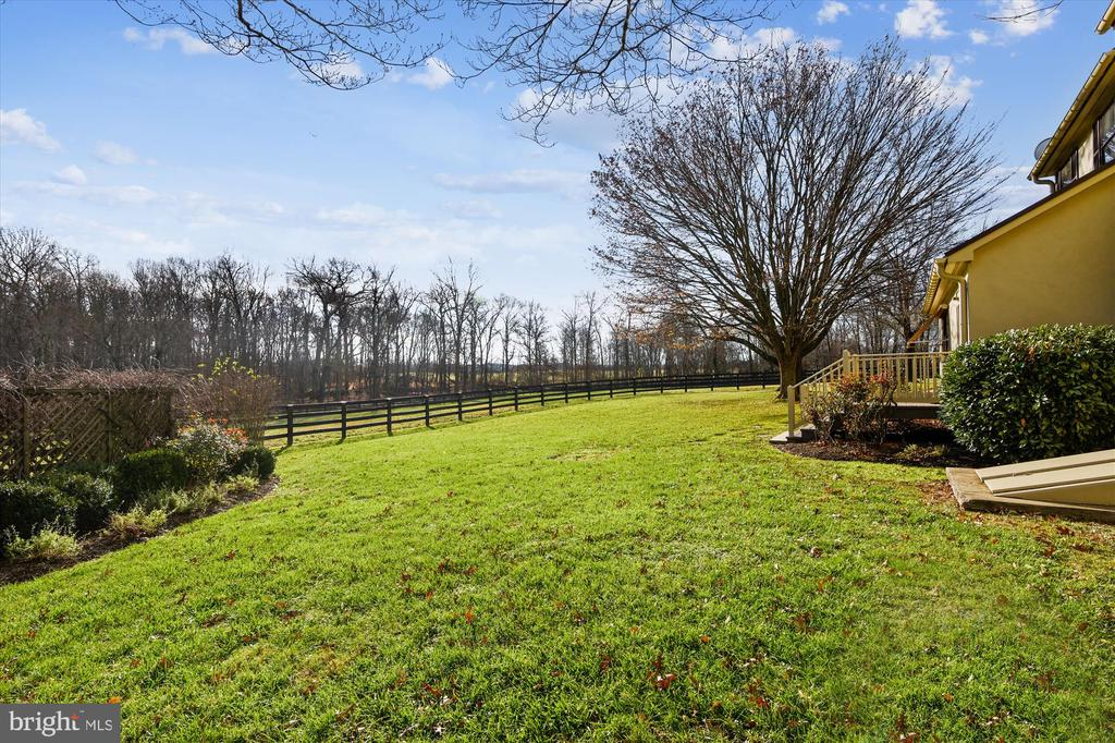 back yard - 22956 CARTERS FARM LN, MIDDLEBURG