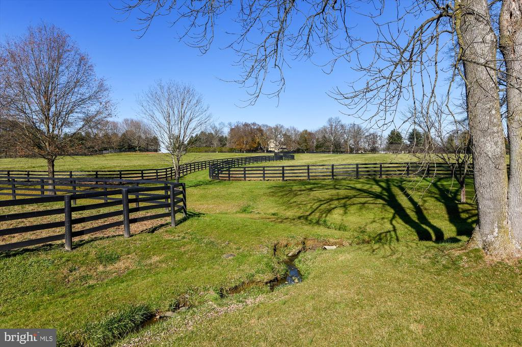 paddocks - 22956 CARTERS FARM LN, MIDDLEBURG
