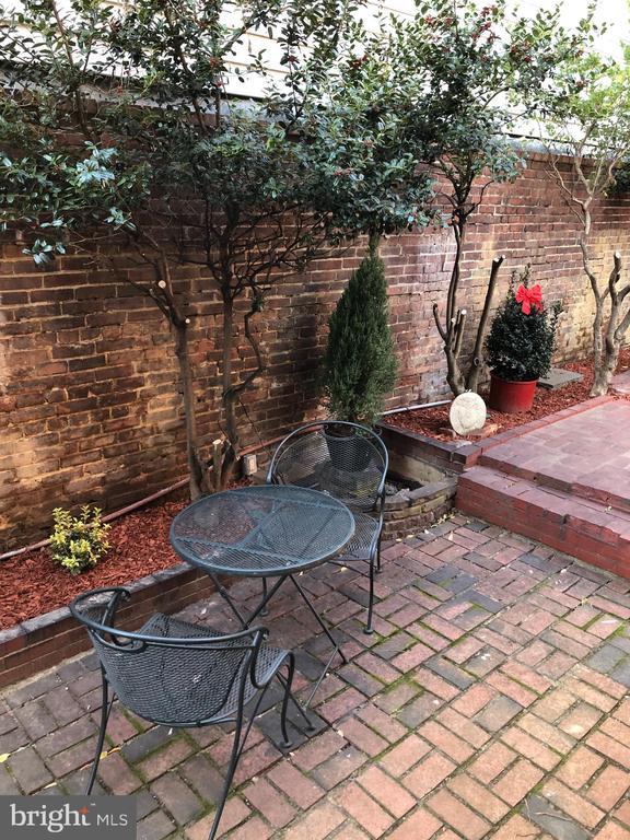 Side garden - 330 A ST SE, WASHINGTON