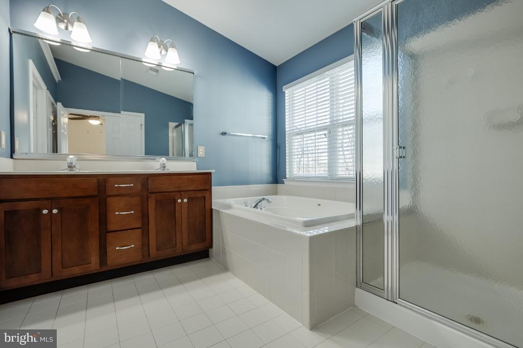 Owners Bathroom with Shower and Bath Tub - 20087 NORTHVILLE HILLS TER, ASHBURN