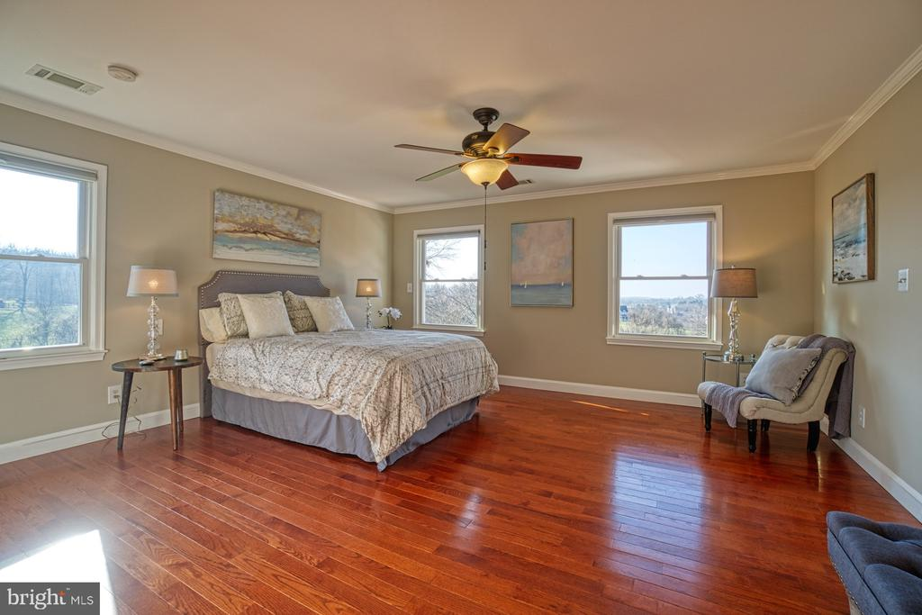 Expansive Owner's Suite with AMAZING Views! - 18914 SHELBURNE GLEBE RD, LEESBURG