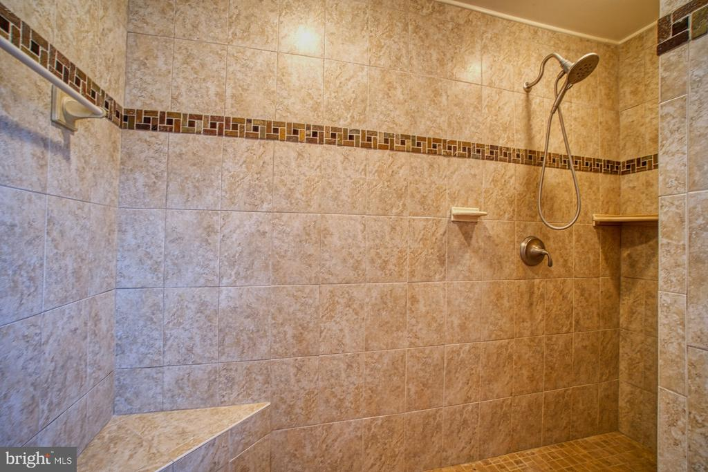 Massive Walk-in Shower! - 18914 SHELBURNE GLEBE RD, LEESBURG