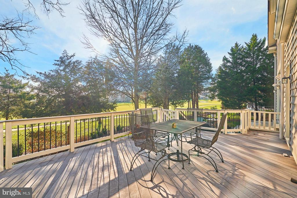 You Can Access the Deck from the Owners Suite - 43499 BUTLER PL, LEESBURG
