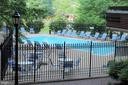 Outdoor Pool - The Williamsburg - 1276 N WAYNE ST #320, ARLINGTON