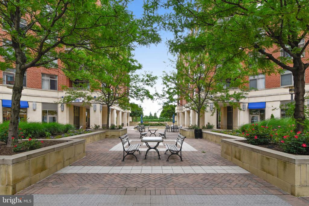 Building Amenities - Courtyard - 3650 S GLEBE RD #464, ARLINGTON