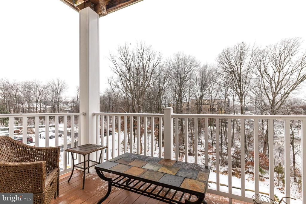 Balcony with Wooded Views - 43144 SUNDERLAND TER #300, ASHBURN