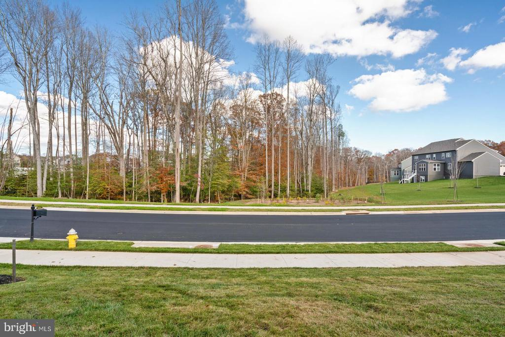 Woodsy view out front - 6541 RUNNING CEDAR LN, MANASSAS
