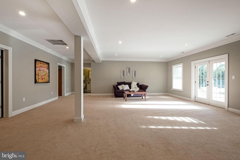 Lower Lvl offers so much light and bright! - 10713 ROSEHAVEN ST, FAIRFAX