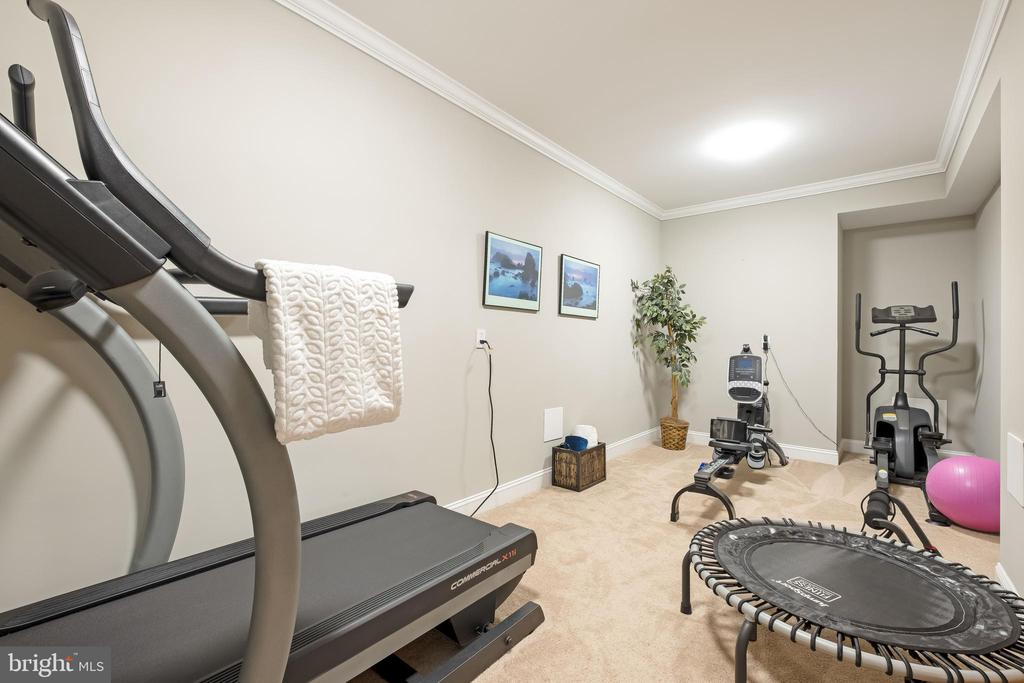 At Home Gym w/ Sauna - 10713 ROSEHAVEN ST, FAIRFAX