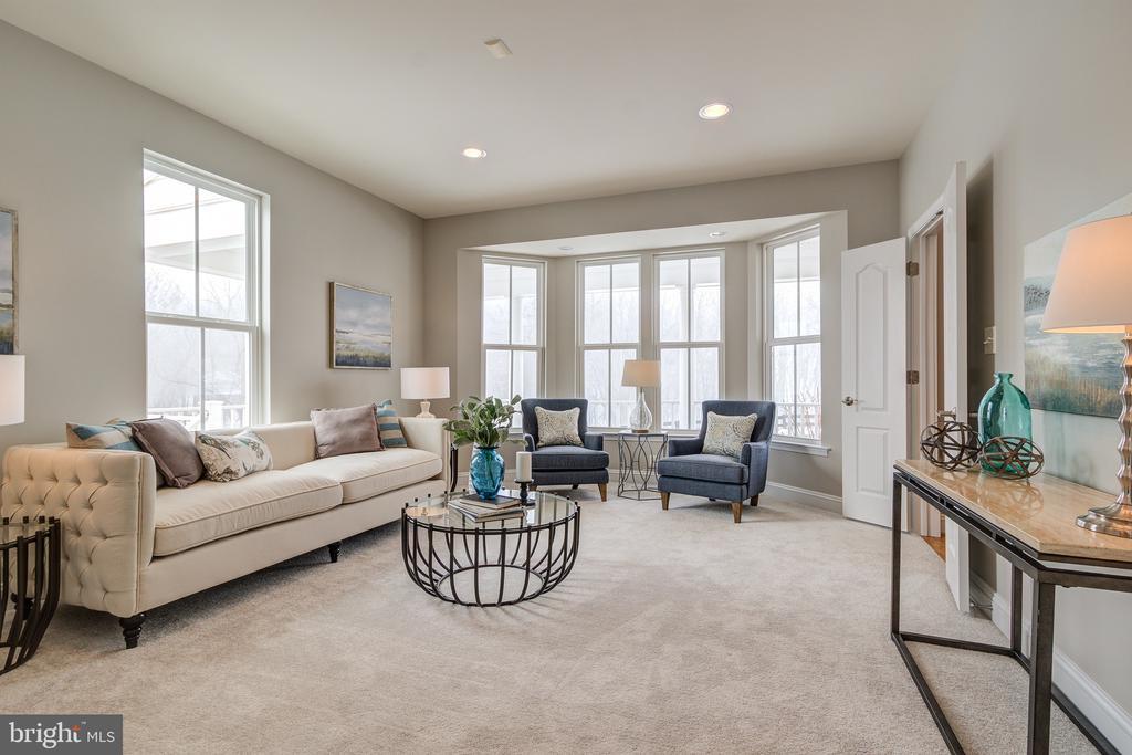 Living Room - 42130 CHERRY SPRING LN, LEESBURG