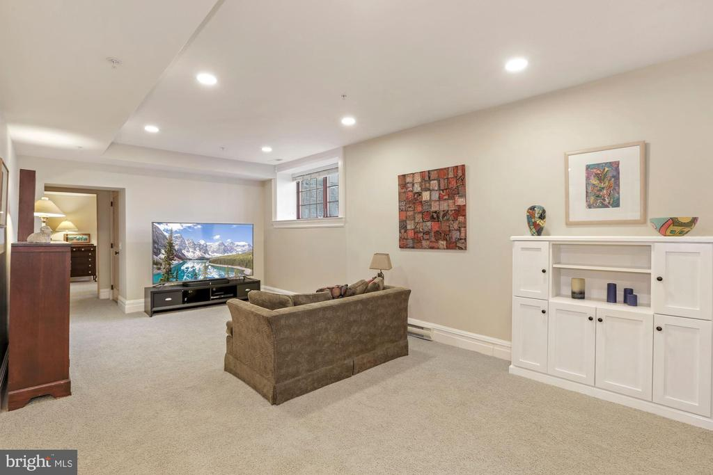 Lower Level Living Room - 9610 DEWITT DR #PH101, SILVER SPRING