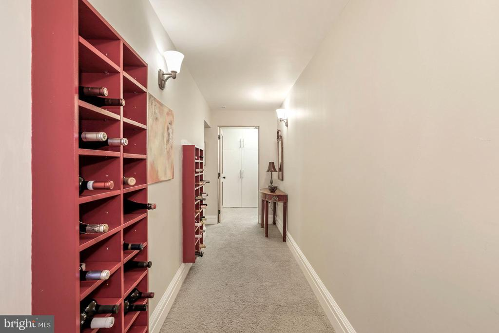 Built In Wine Cabinets Lower Level Hallway - 9610 DEWITT DR #PH101, SILVER SPRING