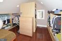 WALK-IN CLOSET WITH BUILT-INS - 2336 ADDISON ST, VIENNA