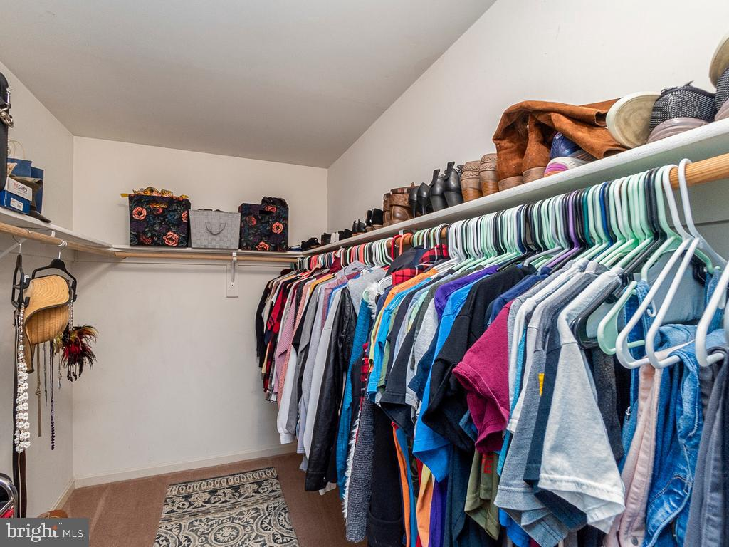 1 of 2 identical walk-in closets - 20 BRUSH EVERARD CT, STAFFORD