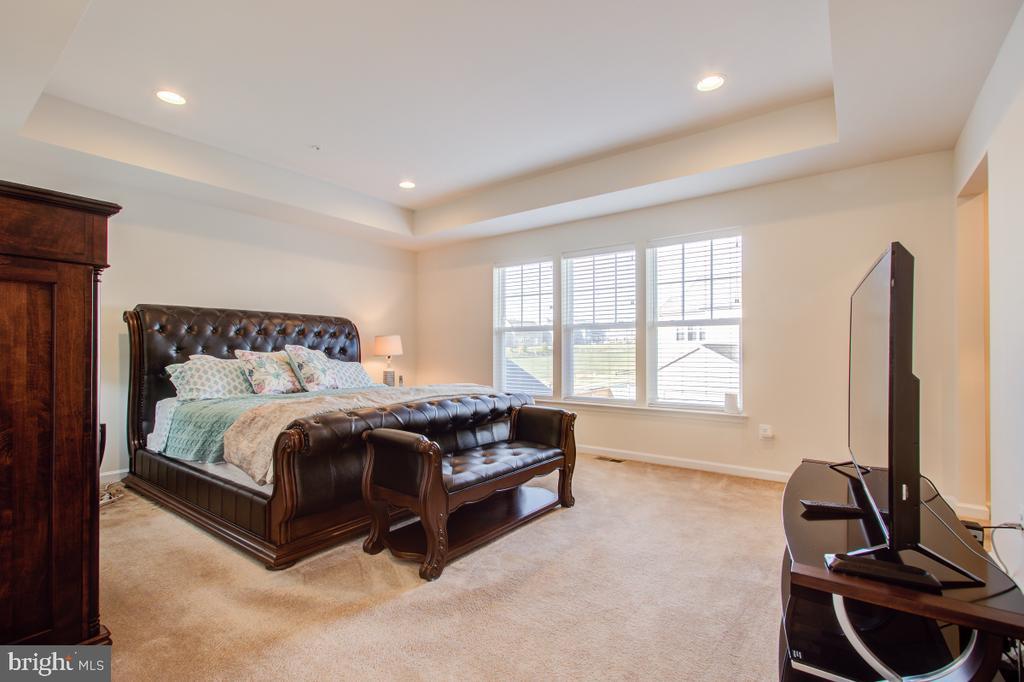 Gorgeous Primary Bedroom. - 5502 HAWK RIDGE RD, FREDERICK
