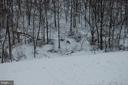 Deer in the woods in winter. - 17652 TEDLER CIR, ROUND HILL