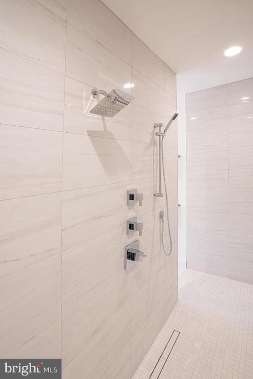 Master shower for two - 110 TAPAWINGO RD SW, VIENNA