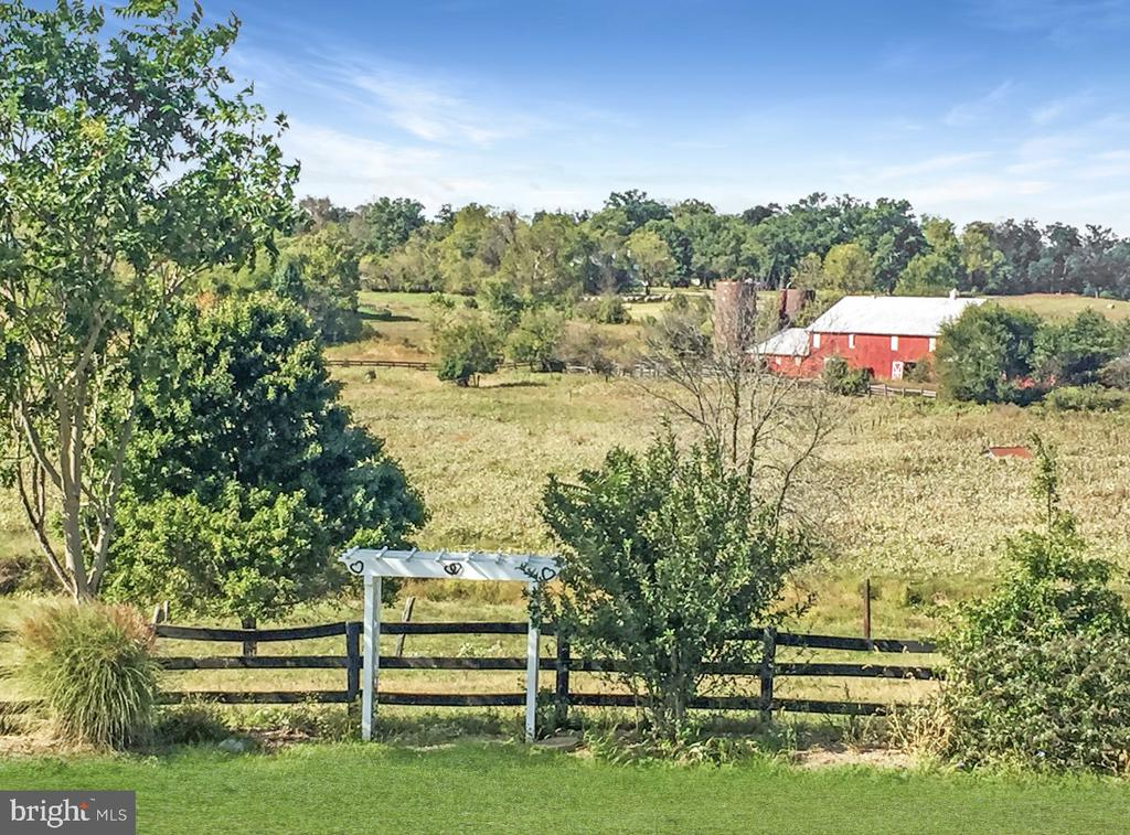 - 15614 DALEY FARM LN, PURCELLVILLE