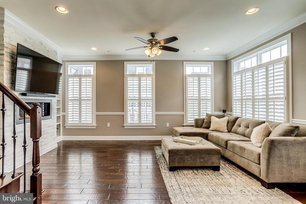Bright living room with  walls of windows - 4349 4TH ST N, ARLINGTON