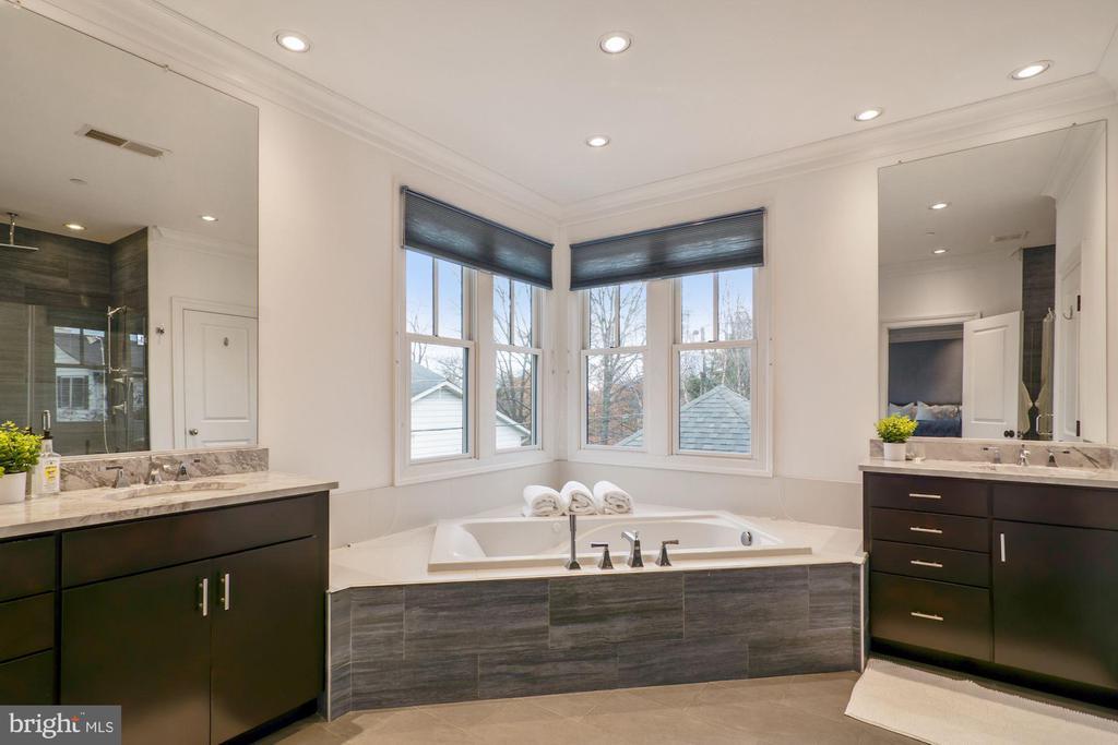 Upgraded owner's bathroom - 491 N WAKEFIELD ST, ARLINGTON