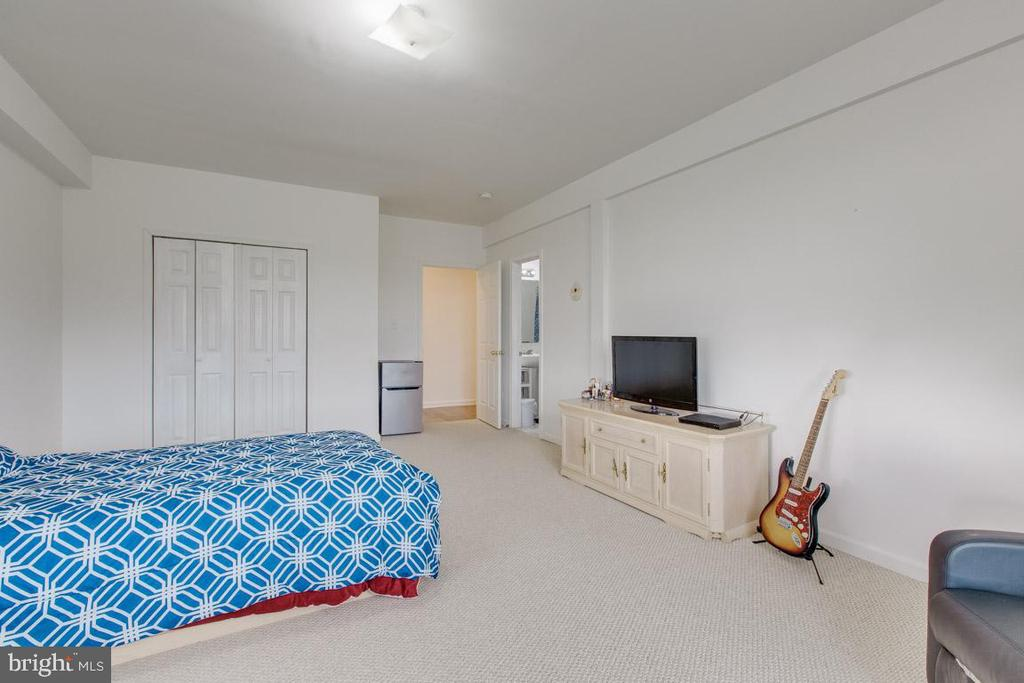 Lower level 2nd full bedroom- Alt view - 41205 CANONGATE DR, LEESBURG