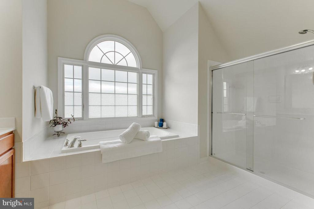 Large master bathroom with private soaking tub - 41205 CANONGATE DR, LEESBURG