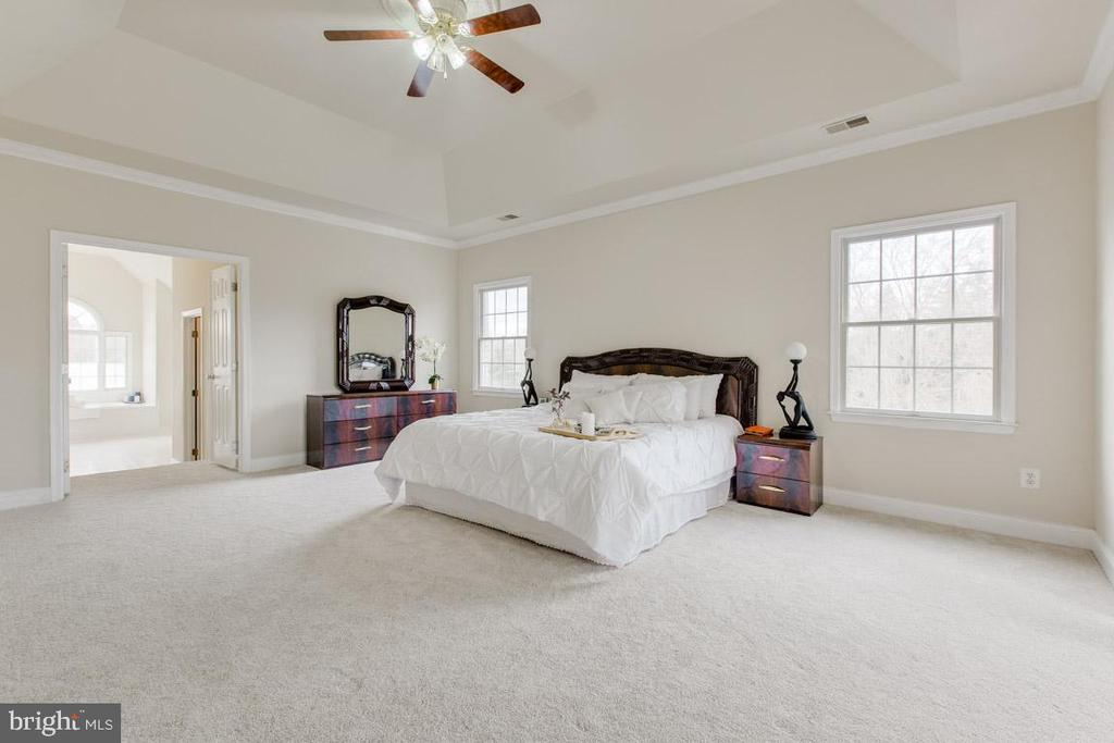 Spacious master bedroom - 41205 CANONGATE DR, LEESBURG