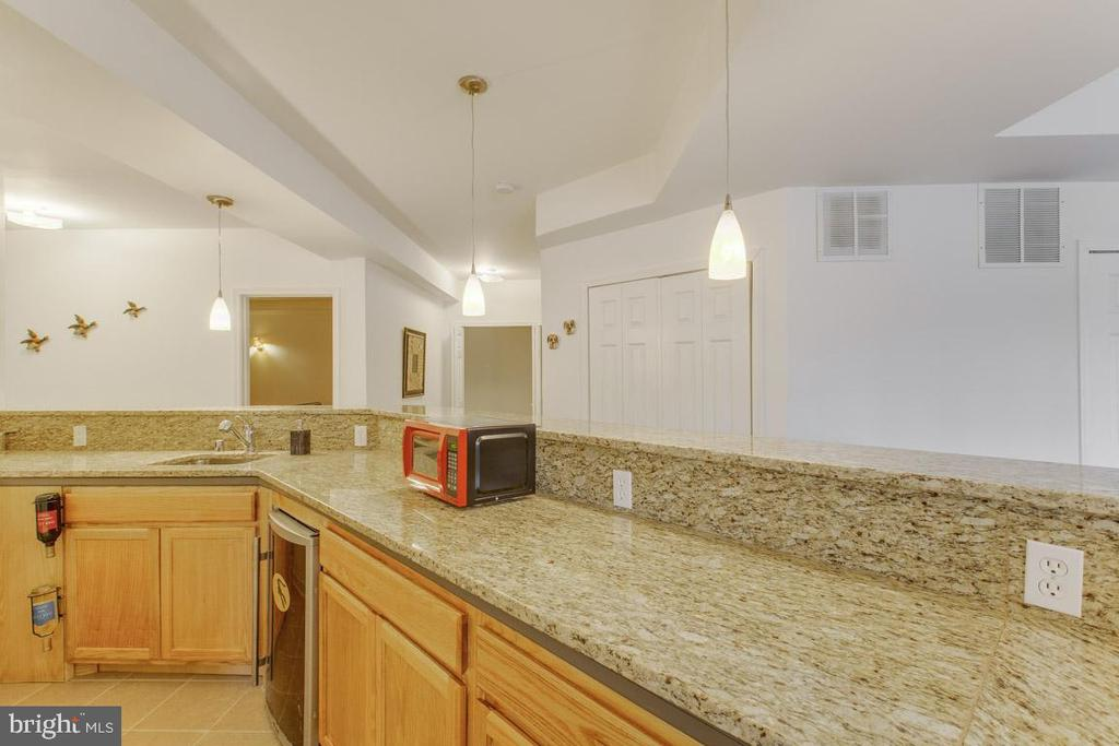 Granite counters on large bar - 41205 CANONGATE DR, LEESBURG