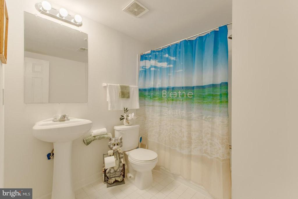 Lower level full bathroom - 41205 CANONGATE DR, LEESBURG