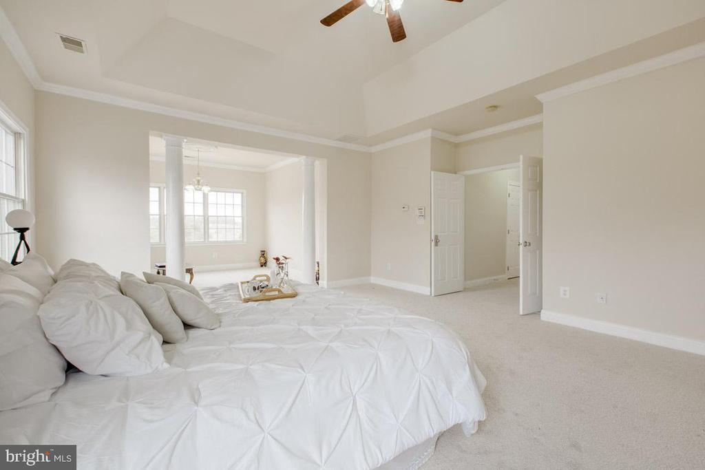 Spacious master bedroom with sitting room - 41205 CANONGATE DR, LEESBURG