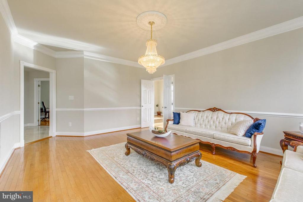 Comfortable living room - 41205 CANONGATE DR, LEESBURG