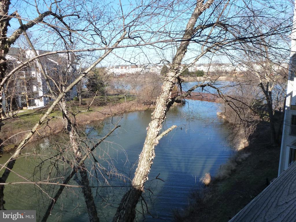 Beautiful view of lake - 20577 SNOWSHOE SQ #301, ASHBURN
