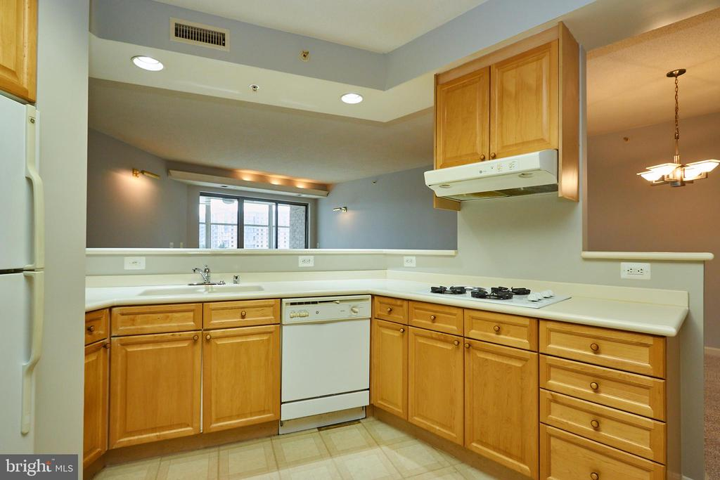 Lots of counter space - 19350 MAGNOLIA GROVE SQ #407, LEESBURG