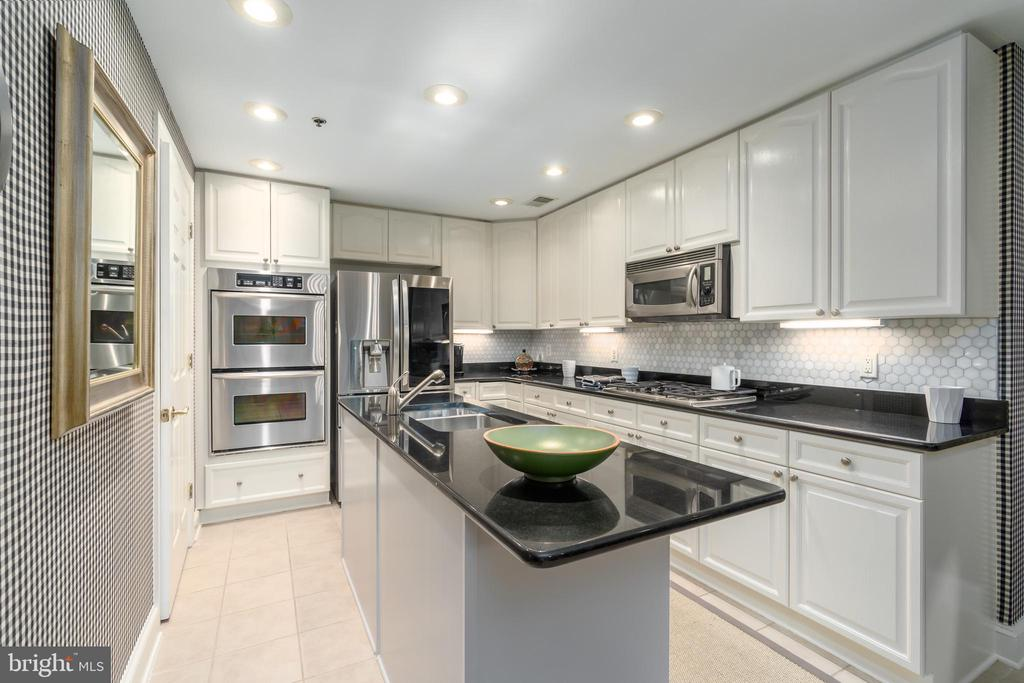 Grmt Kitch Recently Updated, High End Appliances - 1555 N COLONIAL TER #100, ARLINGTON
