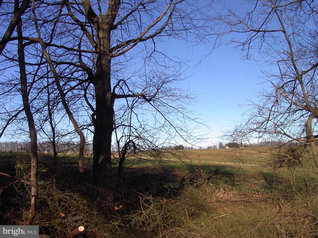 Farmland View - 8902-A LINKS BRIDGE RD, THURMONT
