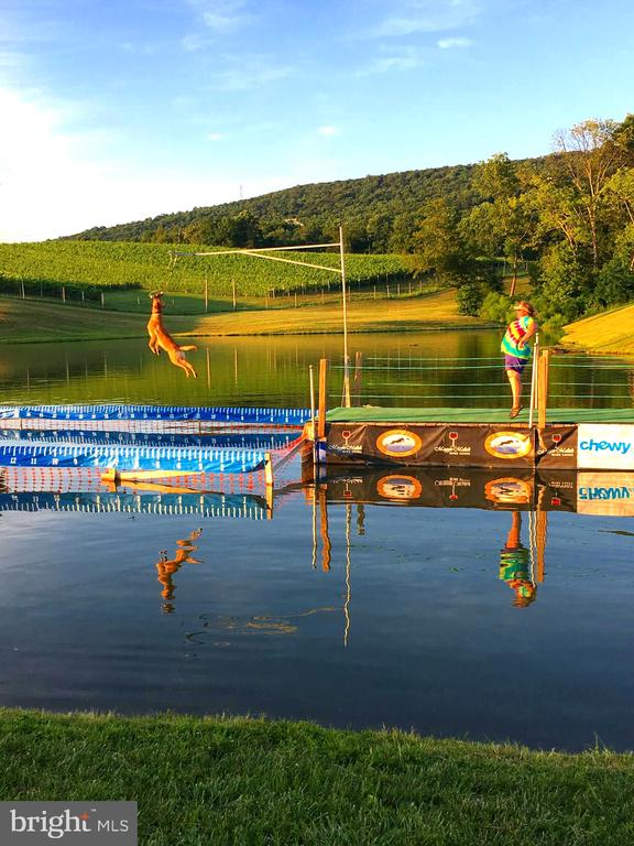 Official Dock Dogs competition jumping dock - 12138 HARPERS FERRY RD, PURCELLVILLE