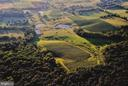 29 acres of grapes on 215 acres of land - 12138 HARPERS FERRY RD, PURCELLVILLE