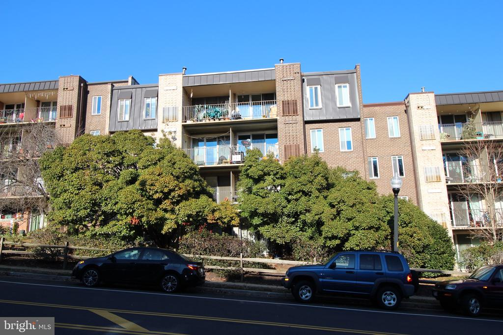 Balcony tucked behind huge old-growth foliage. - 5009 7TH RD S #102, ARLINGTON
