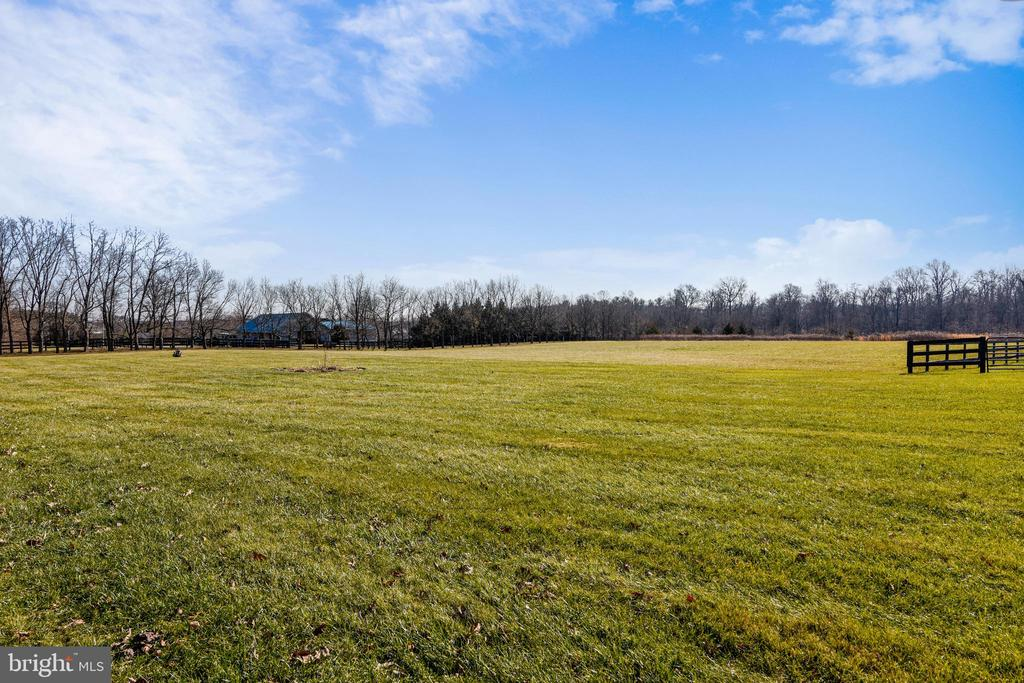 Backyard - 37195 KOERNER LN, PURCELLVILLE