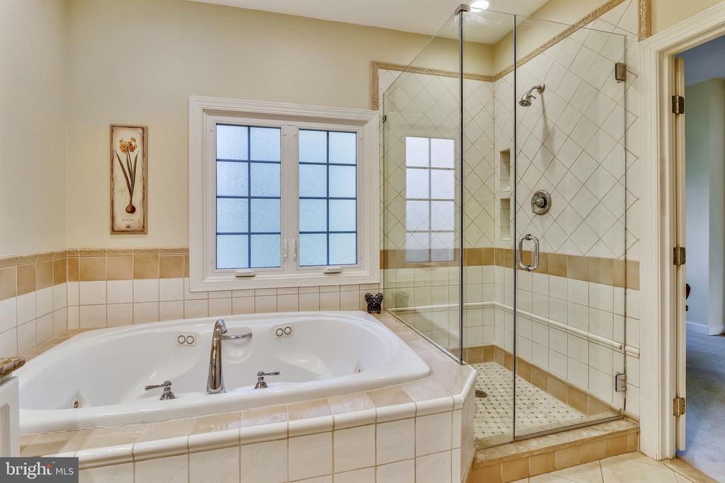 Master Bath: privacy glass - 20449 SWAN CREEK CT, POTOMAC FALLS
