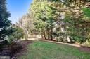 Treelined Back Lawn area - 20449 SWAN CREEK CT, POTOMAC FALLS