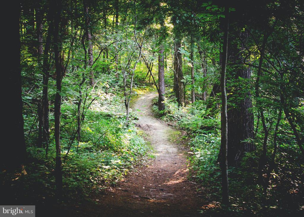Enjoy miles of hiking & biking trails - 9401 OX RD, LORTON