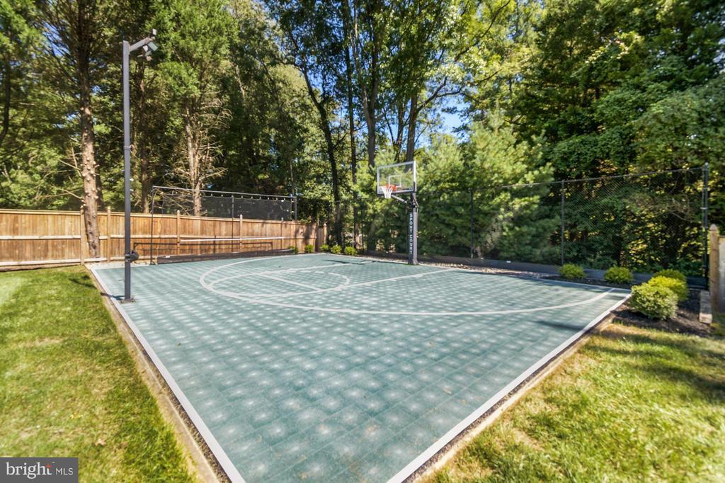 Court.. set up net for lacrosse/baseball practice - 1901 ALLANWOOD PL, SILVER SPRING